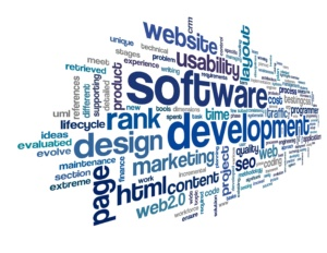 Software Development company services in india, mohaliq