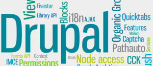 Drupal development company in india