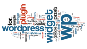 wordpress development company servise in india, mohali